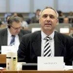 Nederlandse Europarlementariër: AfD zoekt toenadering tot politieke familie PVV